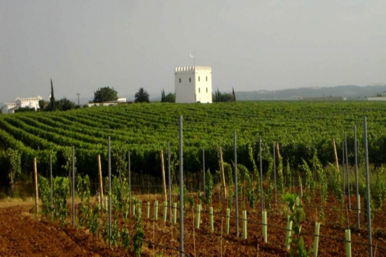 Tower of Esporão, dating from the year 1267, Alentejo, Portugal